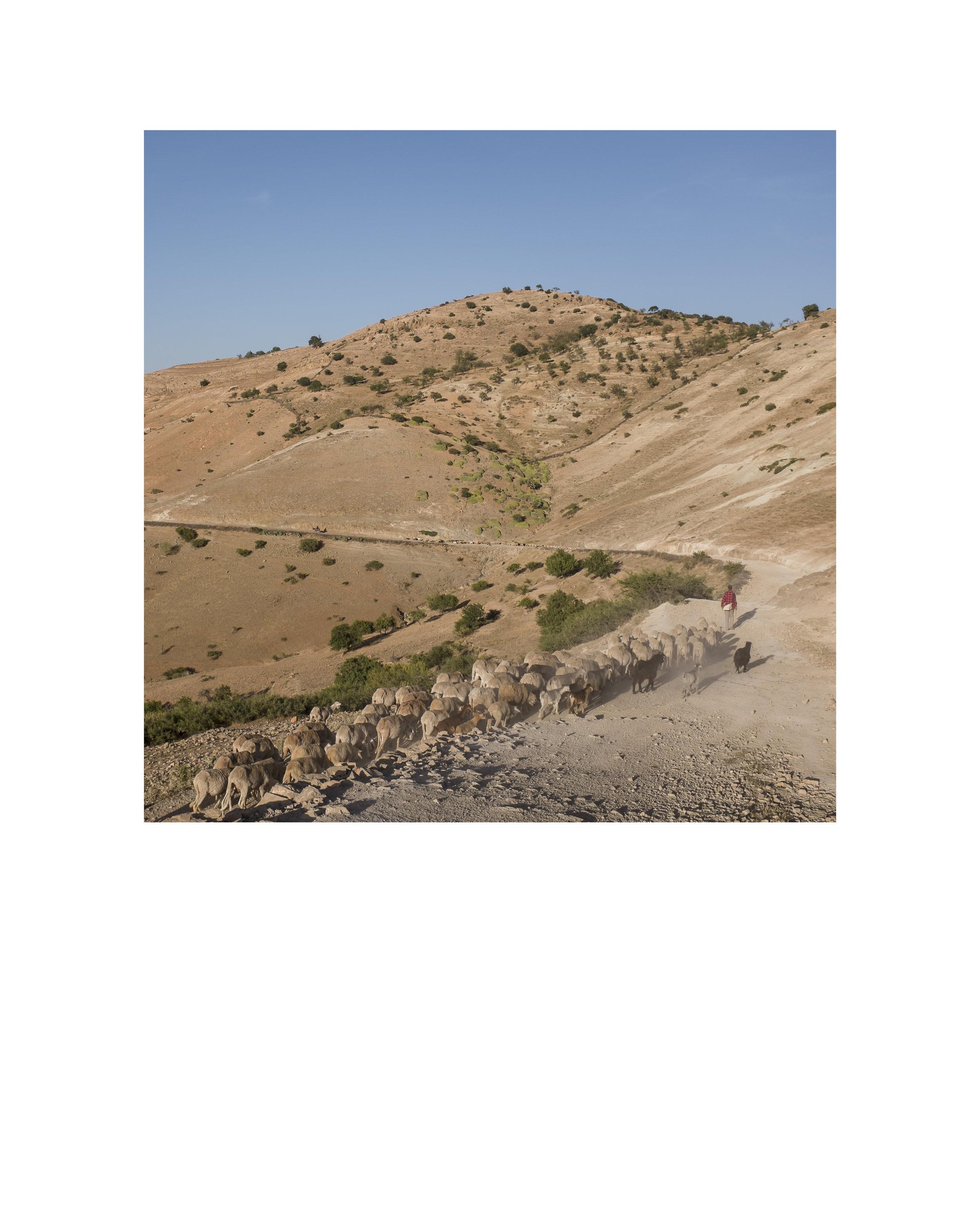 Maroc9.jpg