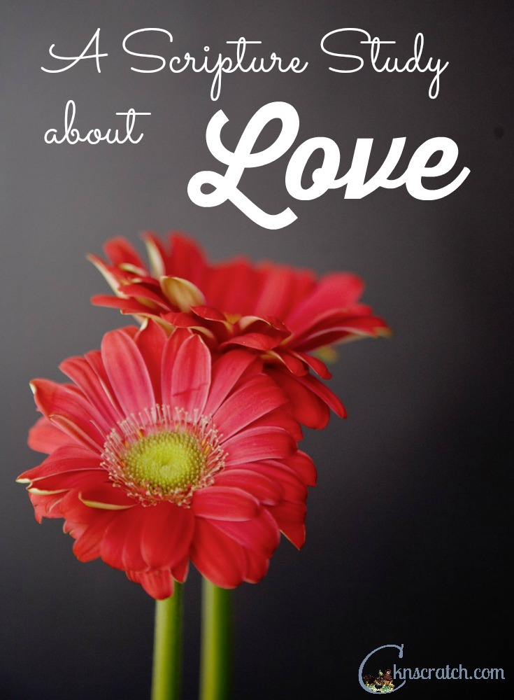 Great scripture study program- I like that it focuses on different types of love