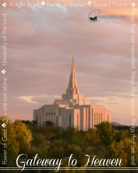 LDS study guide for Ezra Taft Benson Chapter 13- SO Helpful!