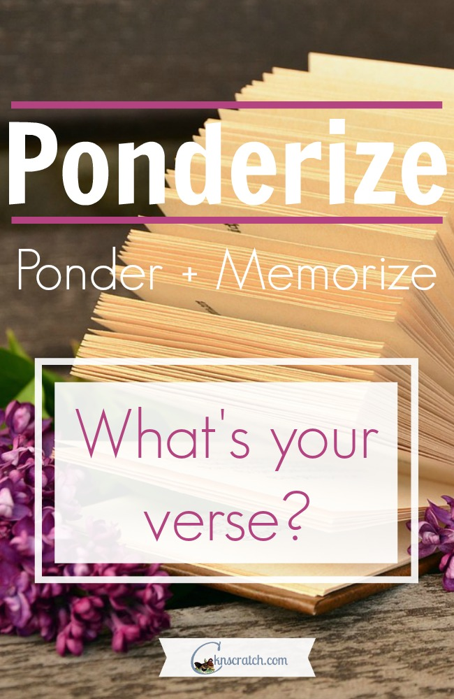 Great summary of what it means to ponderize then share your verse!