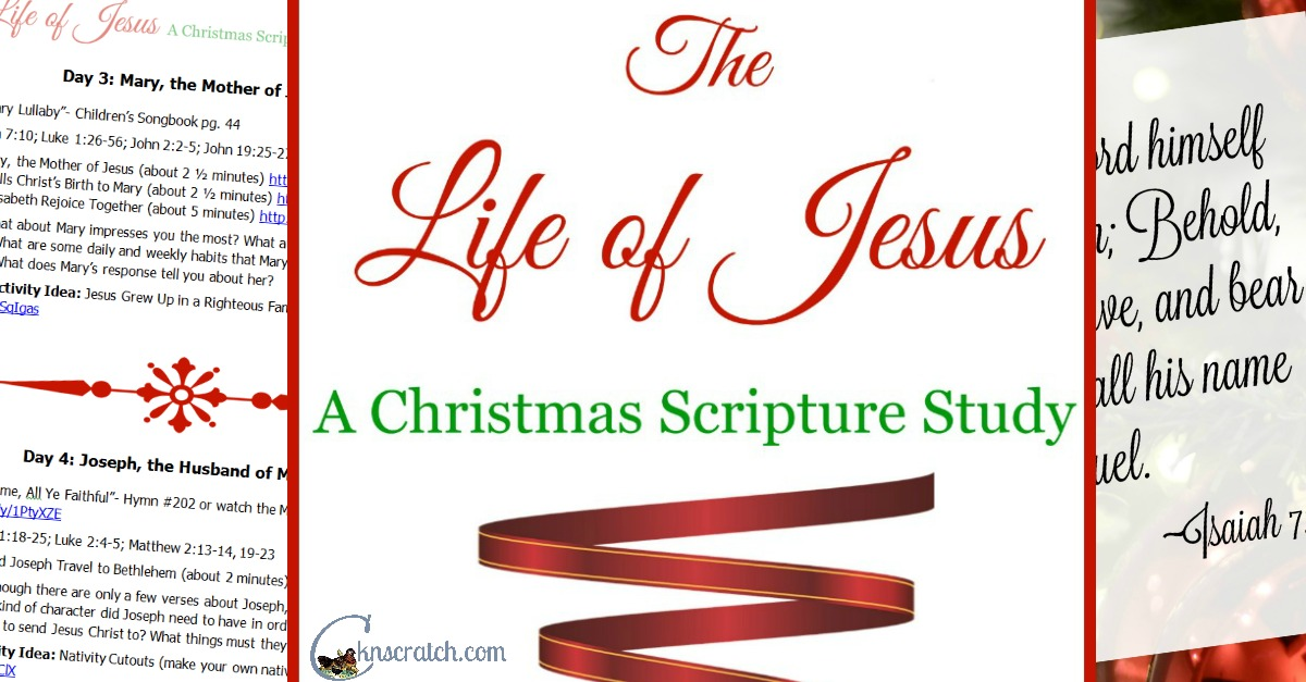 Great scripture study program for Christmas!!