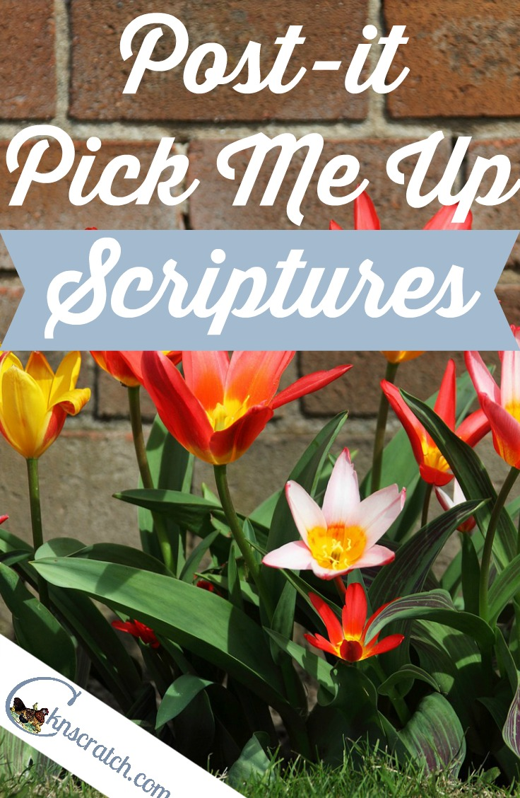 These are great! 6 scriptures to help you focus on the good again- LOVE that you can print them out on post-its!!