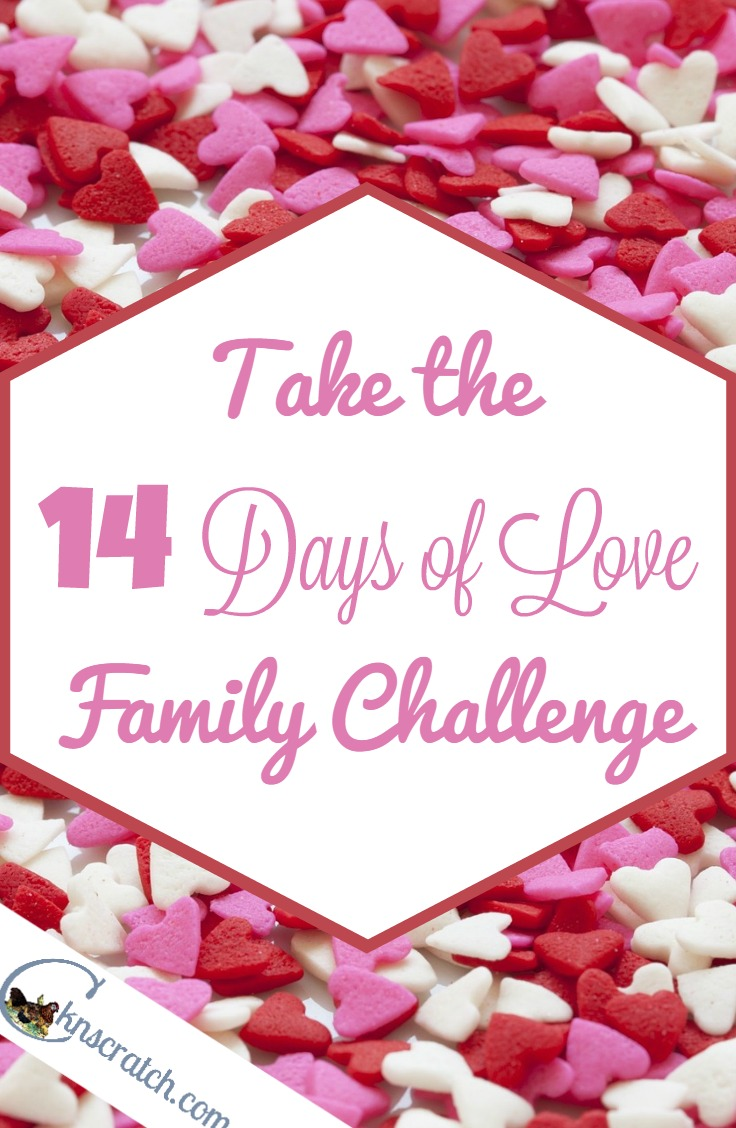 Love this idea for Valentine's Day- family love challenge!