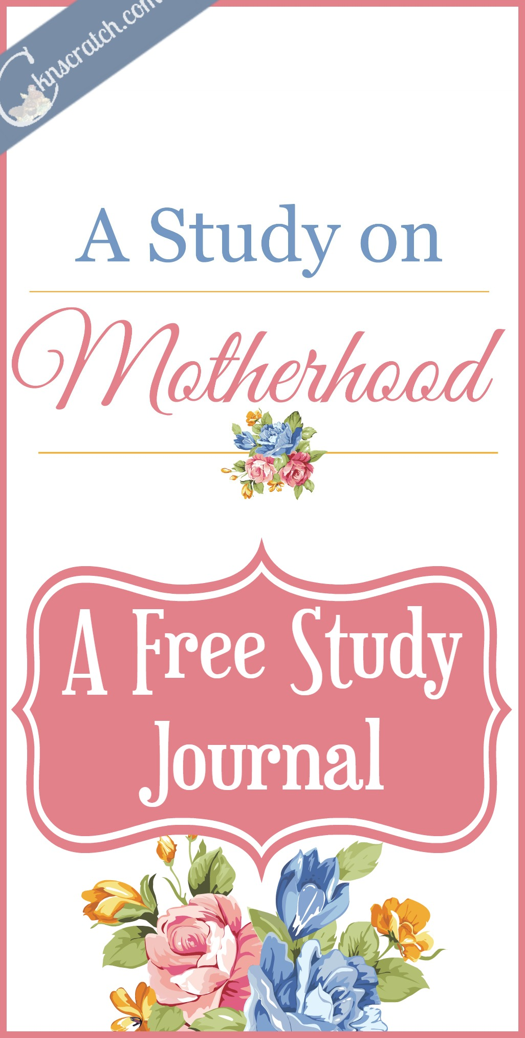 Love this inspired study of what Motherhood really is and our role as woman around the world.
