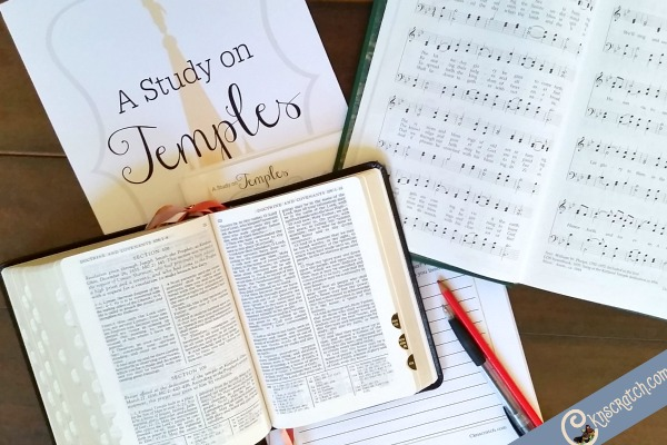 This is a great idea- a scripture study all about the temple!