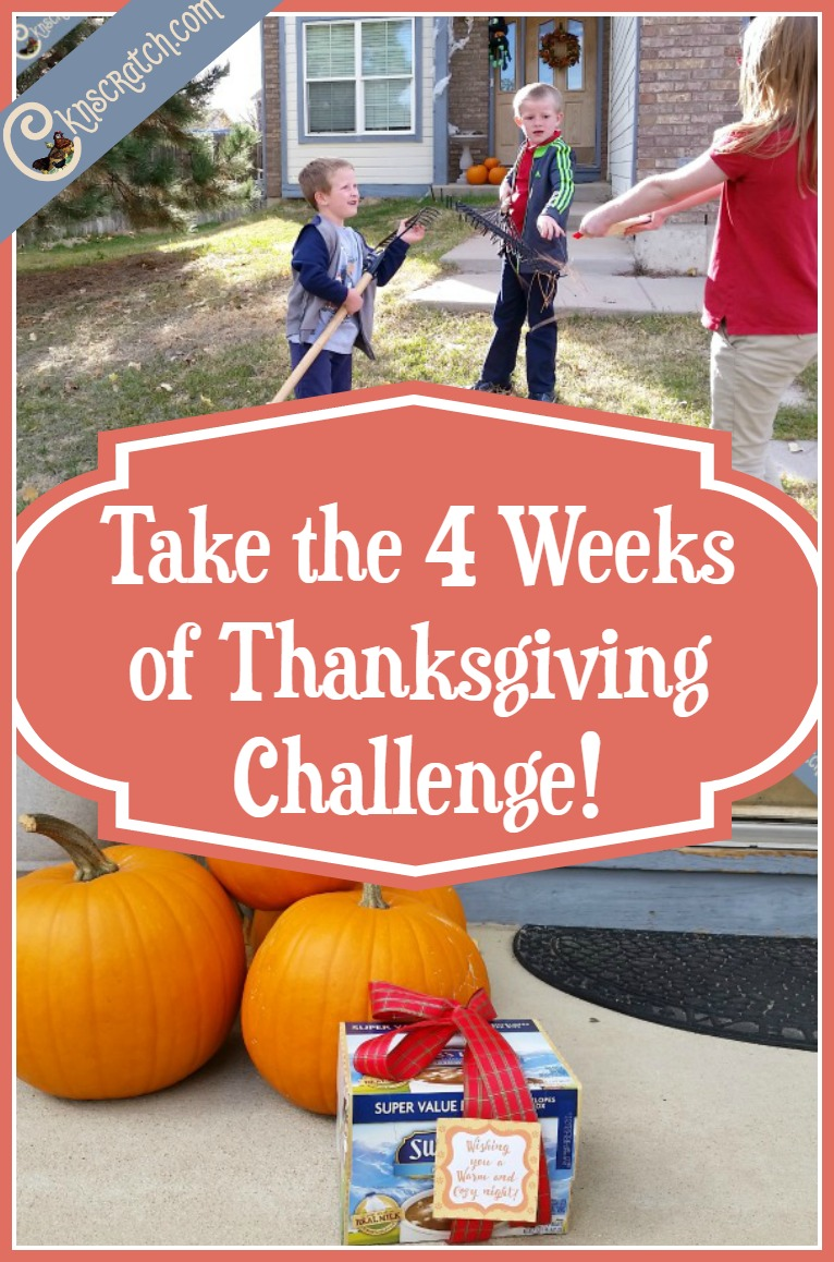 LOVE this idea! Not just listing gratitude but showing it. Take the 4 Weeks of Thanksgiving Challenge