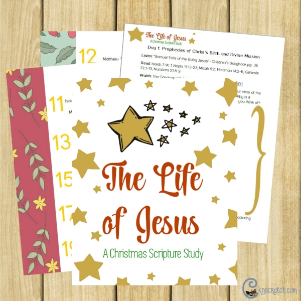 The Life of Jesus Christmas scripture study
