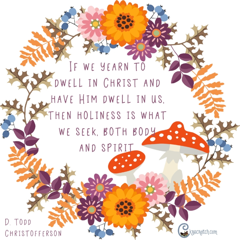 Holiness is what we seek- Elder Todd D. Christofferson