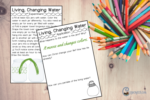 Such a fun experiment idea for learning about the living water and Christ's power to change us. #teachlikeachicken