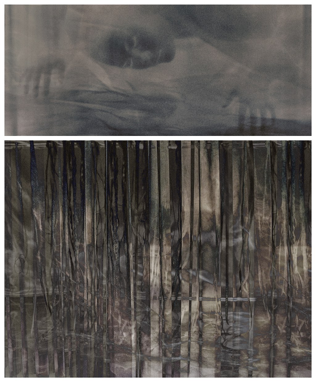 Surface Tension: Root Series, 1.4 , 2016 Chromogenic colour print, diptych, 21 x 48 inches, 37 x 48 inches