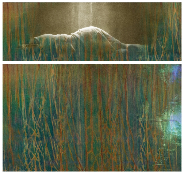 Surface Tension: Root Series, 1.3 , 2016 Chromogenic colour print, diptych, 14 x 42 inches, 25 x 42 inches