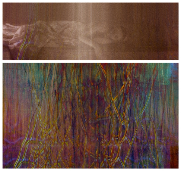 Surface Tension: Root Series, 1.1 , 2016 Chromogenic colour print, diptych, 14 x 42 inches, 25 x 42 inches