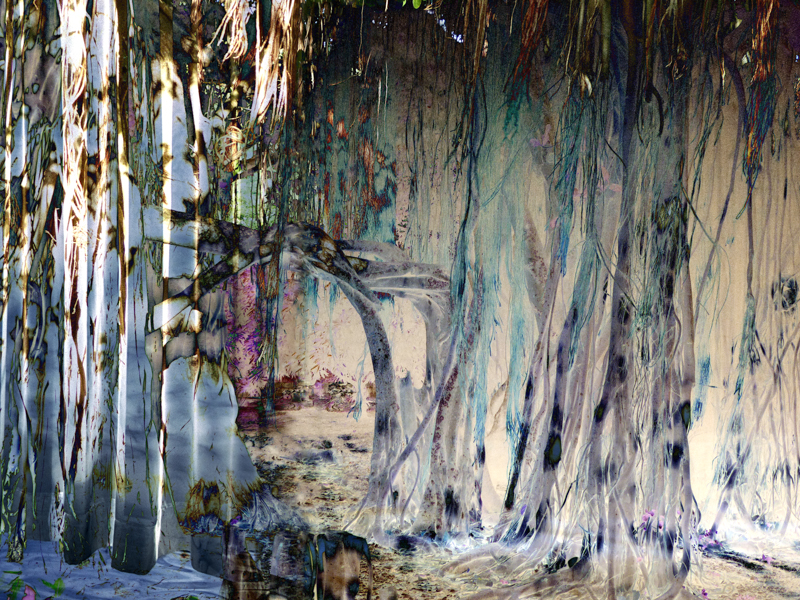 ROOTS AND RADICLES 6 , 2017 PIGMENT INK ON PHOTO RAG, 34 x 45 INCHES