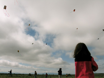 kite flying small.jpg