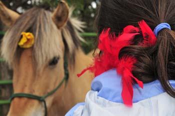 horse maya.jpg