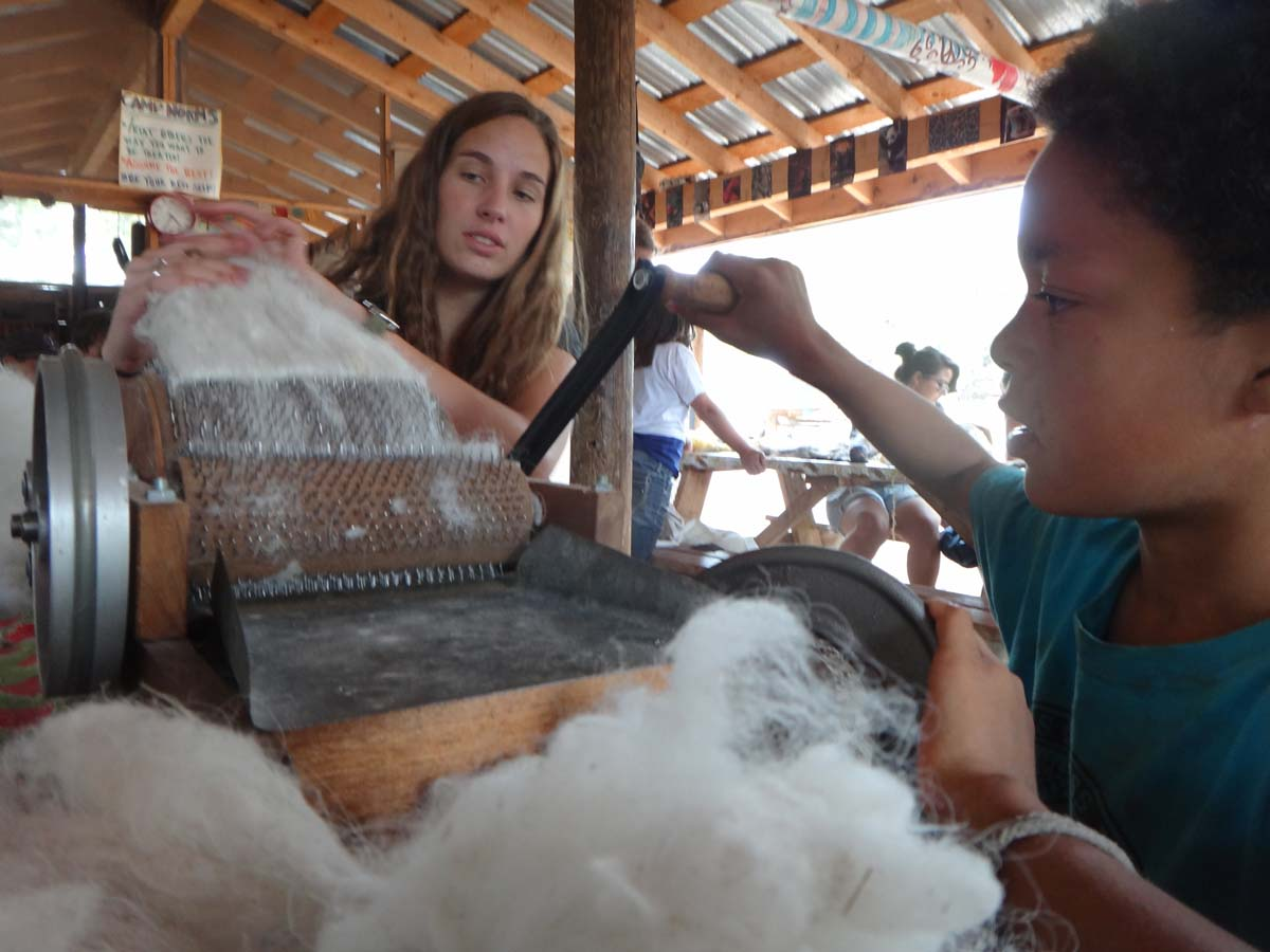An LMI Pioneer shows a camper how to card wool from a sheep he tackled and sheared