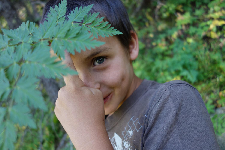 A 4th grader growing a brain