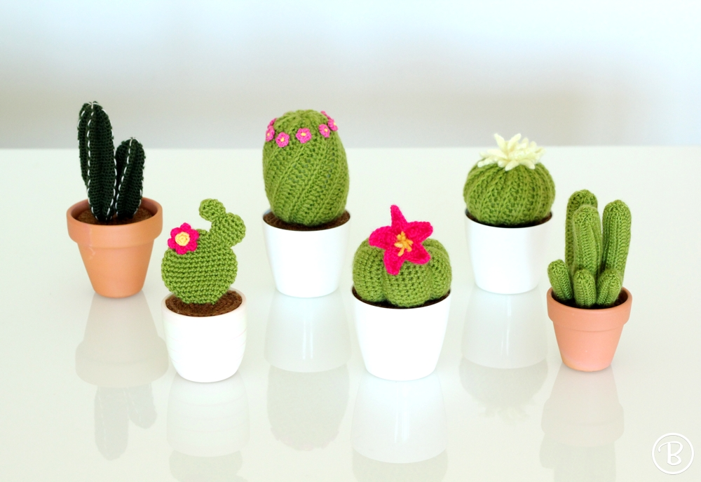Amigurumi cactus and succulents