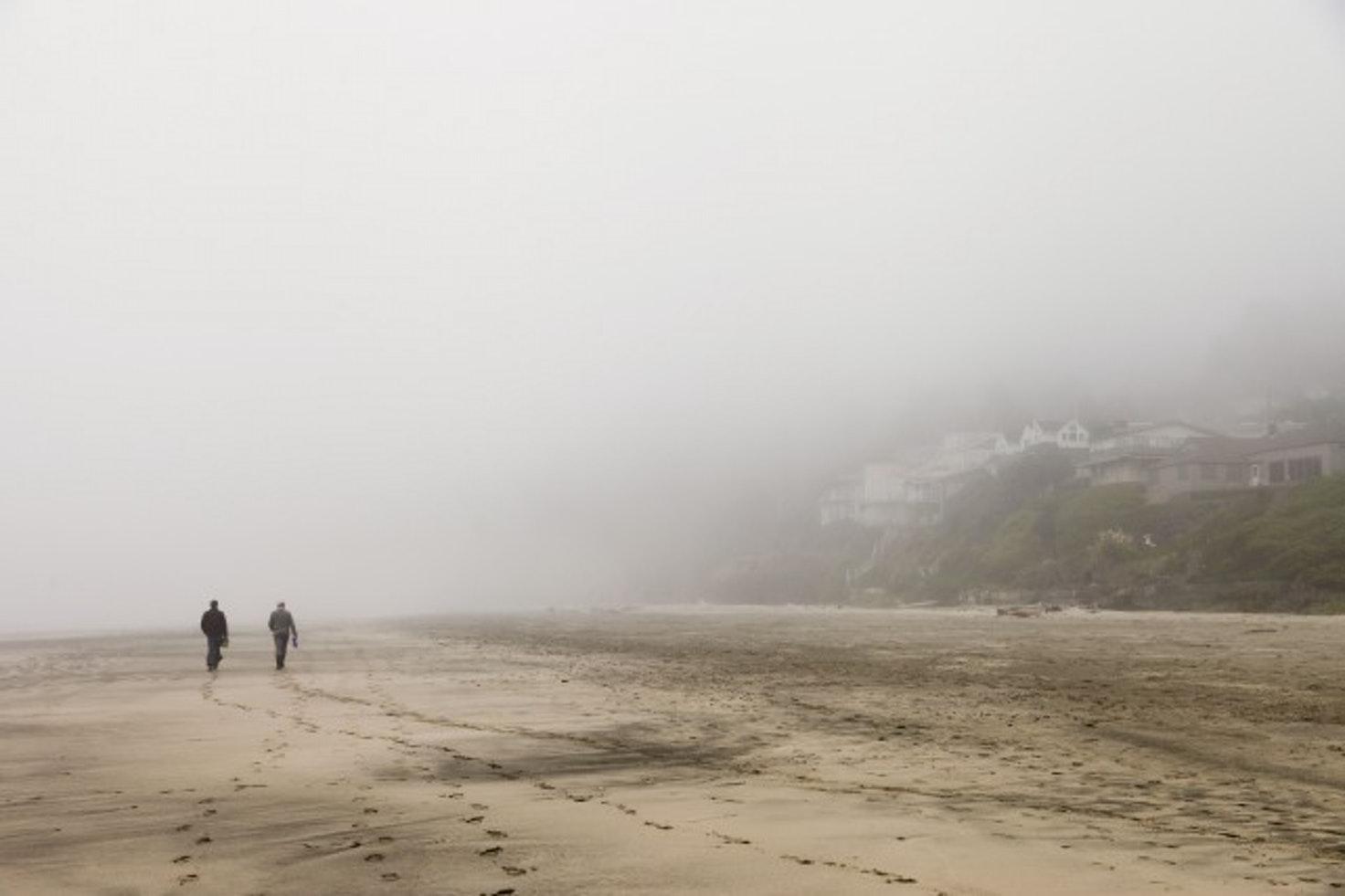 Afar   Coastal foraging in the Oregon fog.