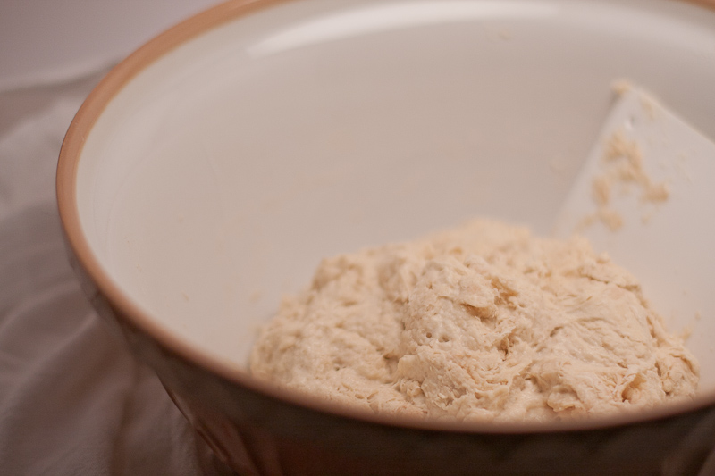 Starter, flour, water, & salt. Before its first rest, right after mixing