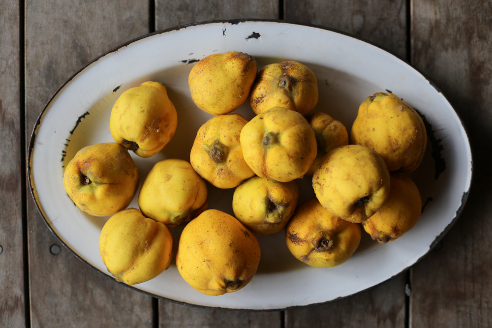 quince on platter