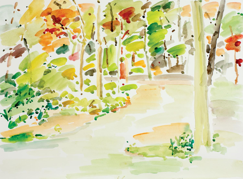 Backyard Autumn-101115-22x30