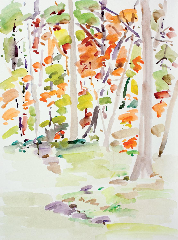 Backyard Autumn-101815-30x22
