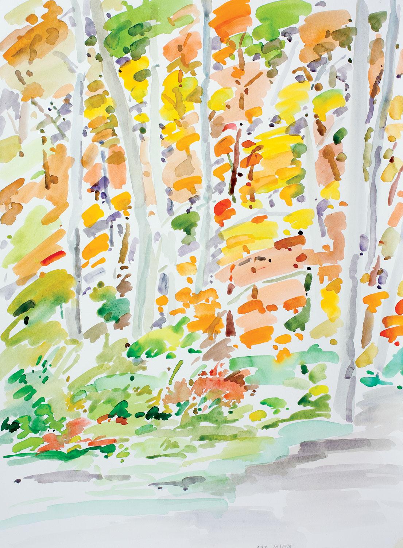 Backyard Autumn-101915-30x22