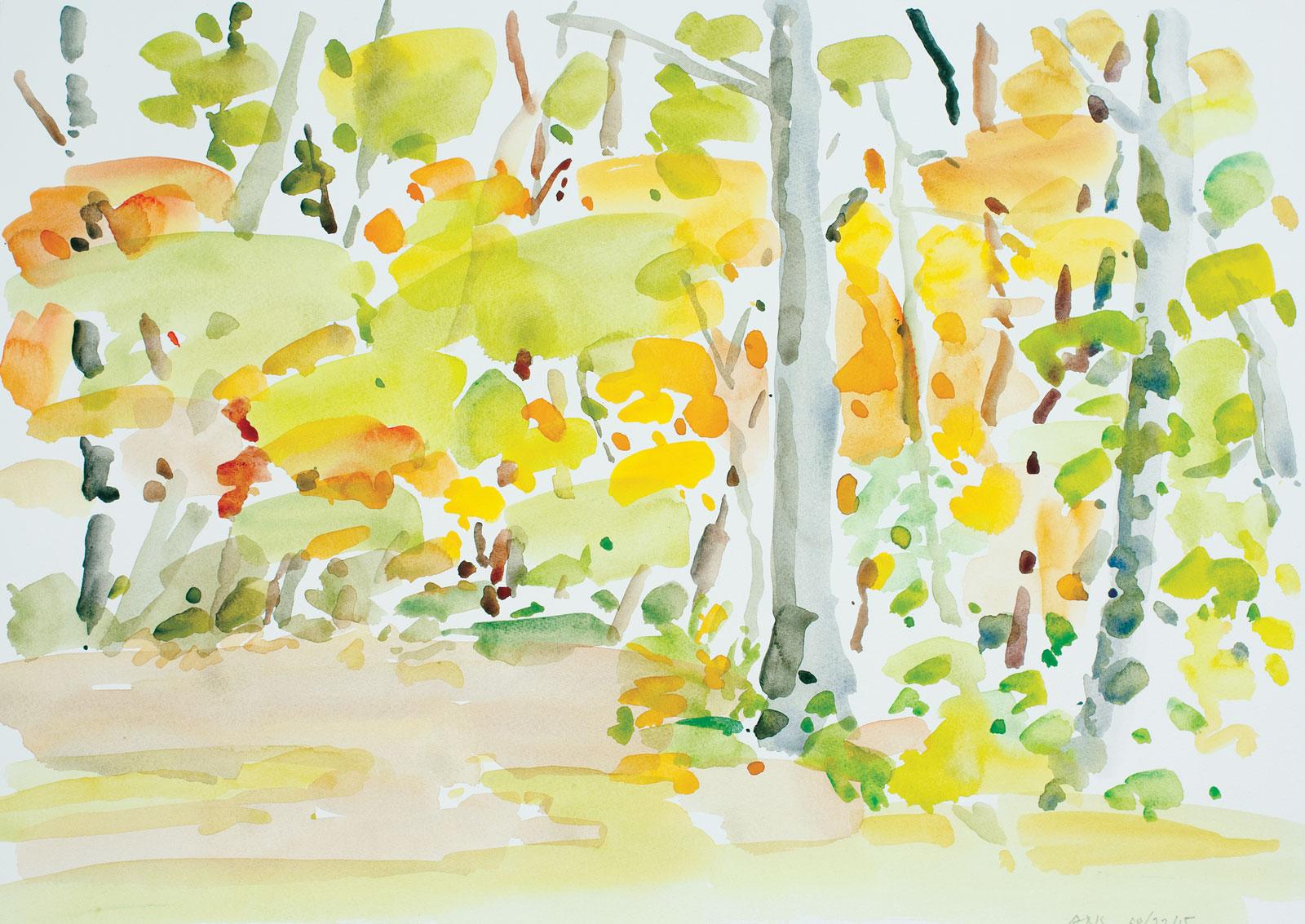Backyard Autumn-102215-14x20