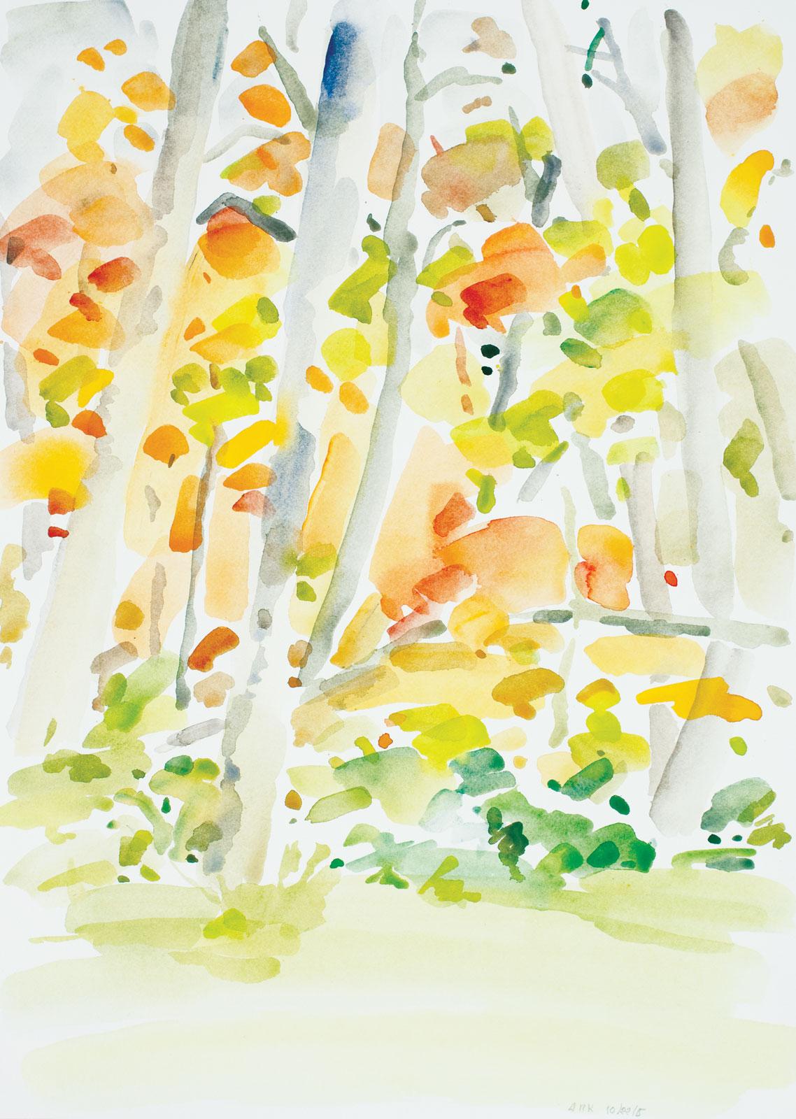 Backyard-Autumn-102215-20x14