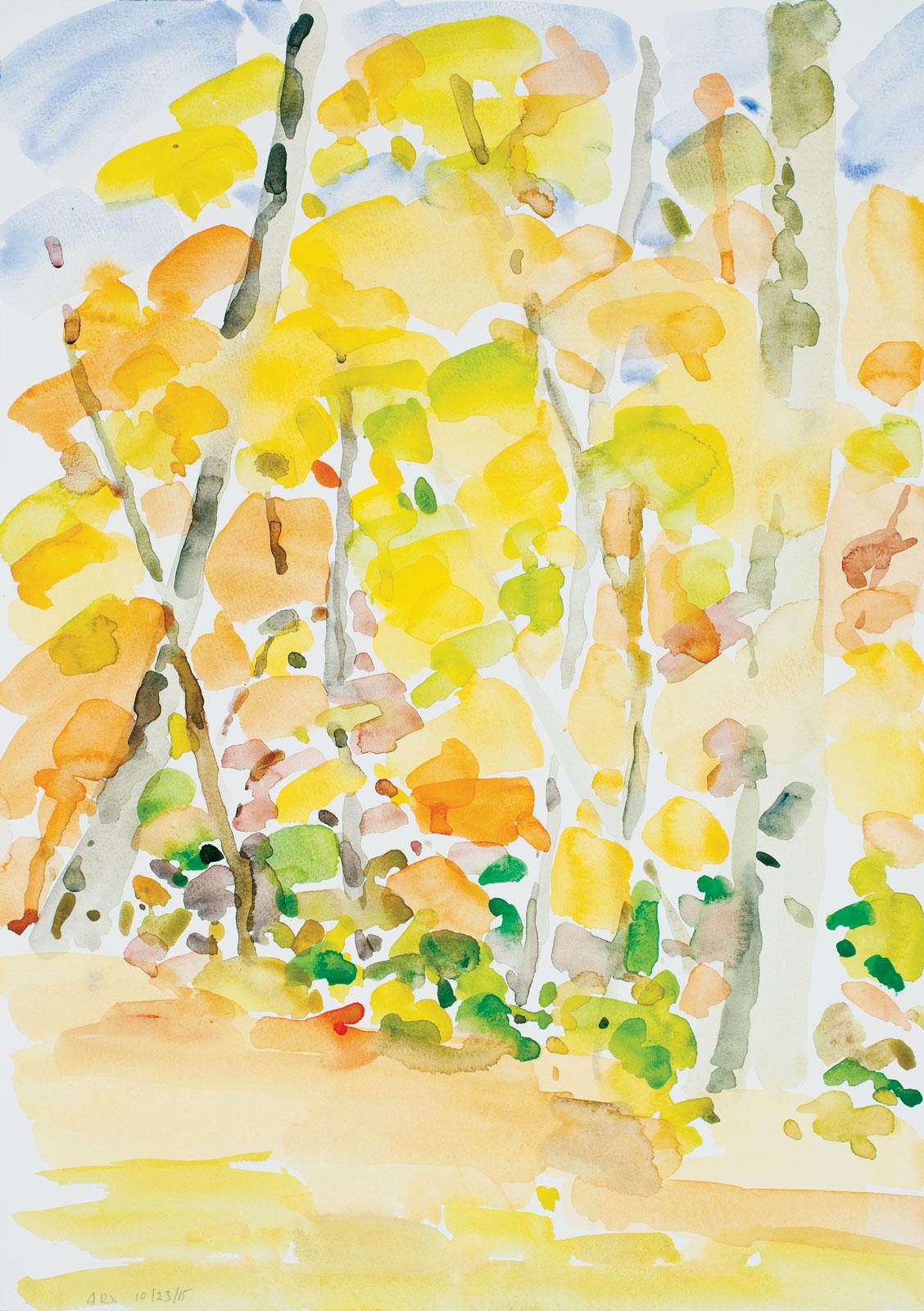 Backyard-Autumn-102315-20x14