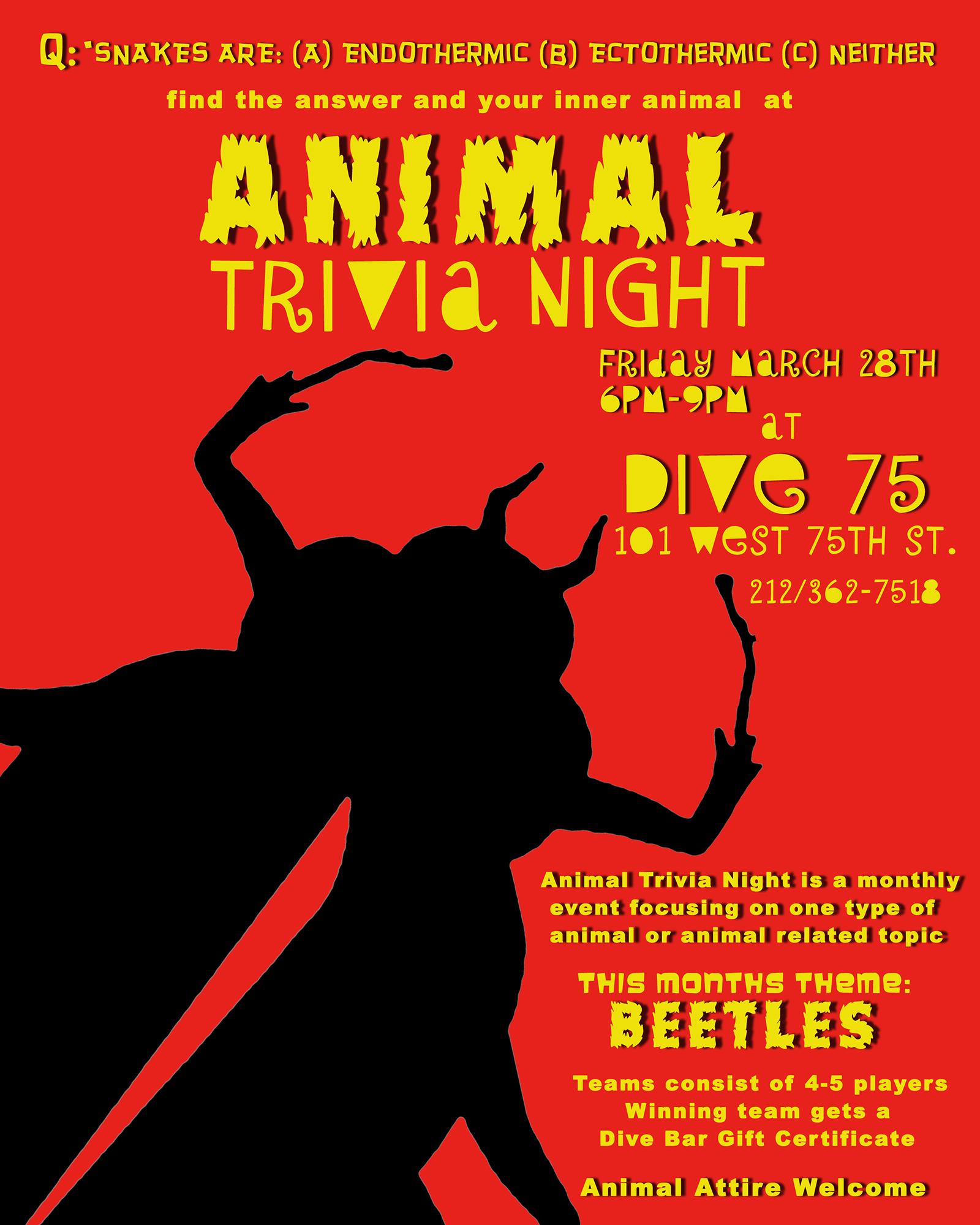 Beetle Trivia 8x10.jpg