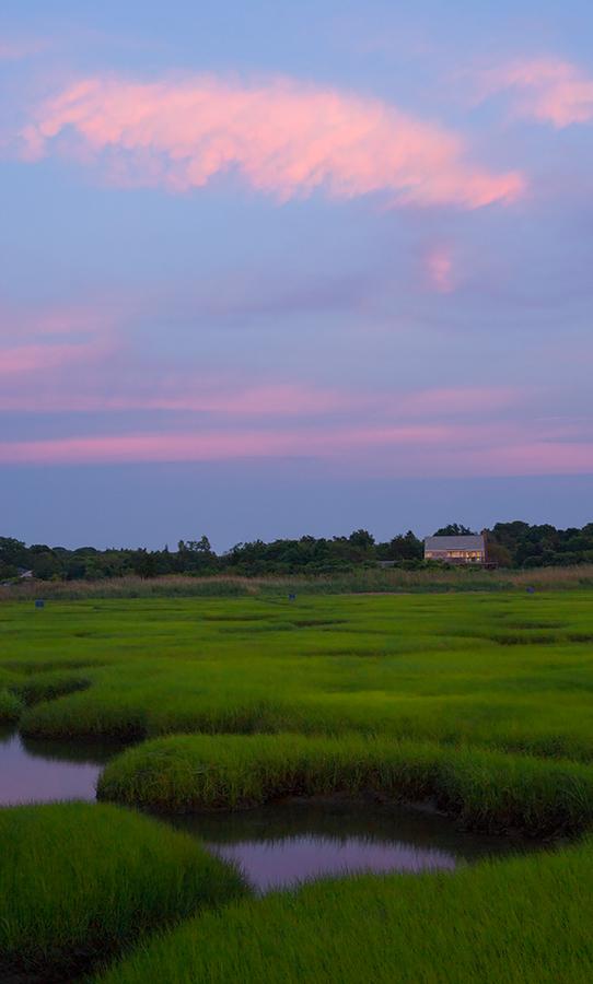 Gray's Marsh