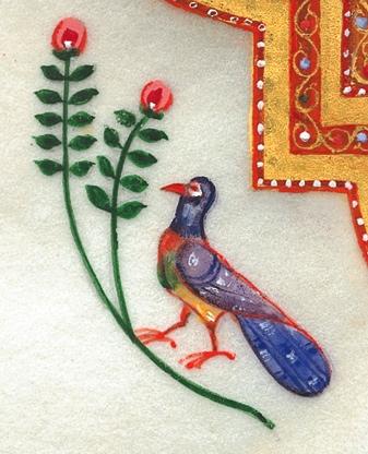 peacock-detail.jpg