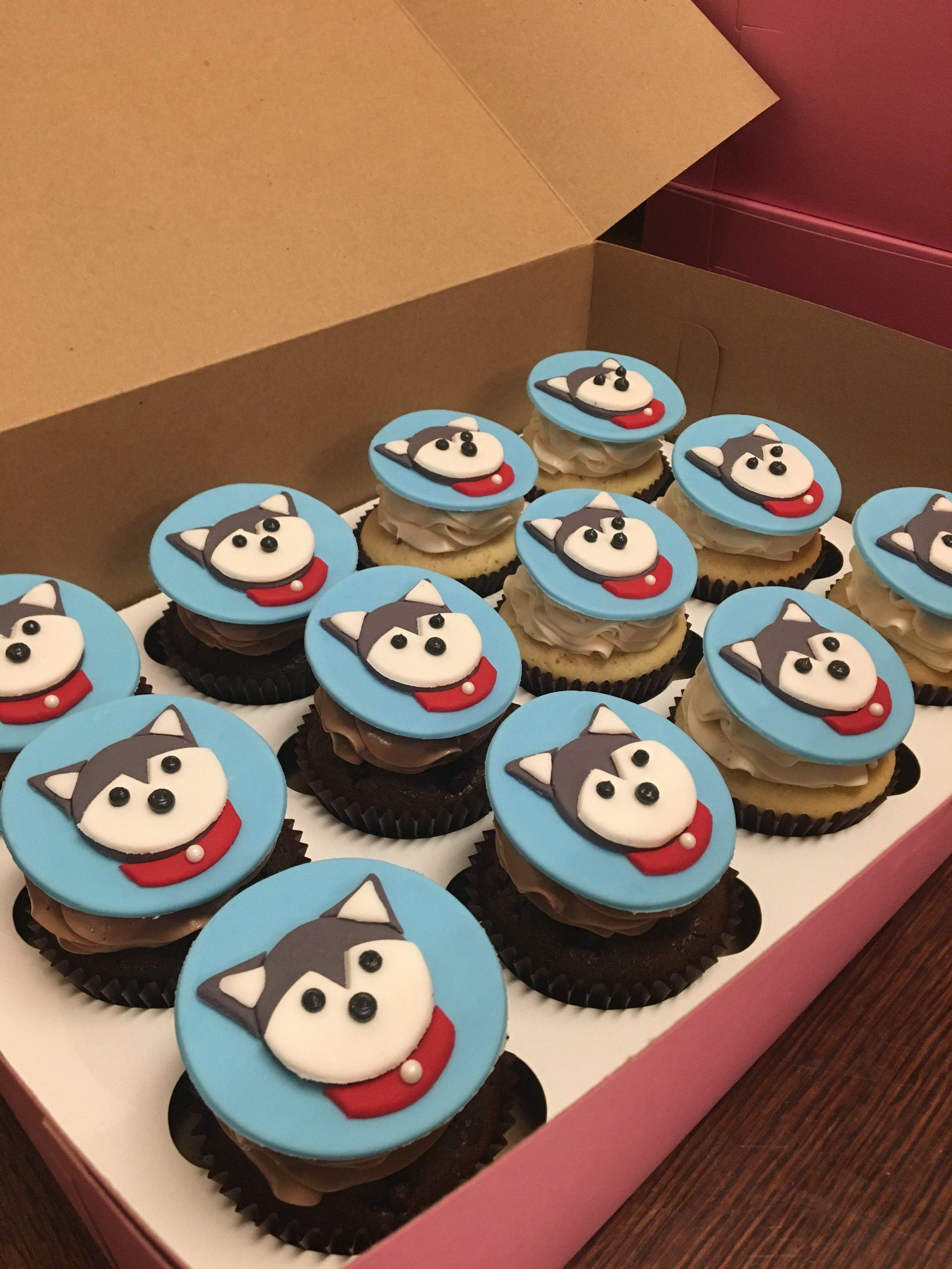 cupcakes husky dog