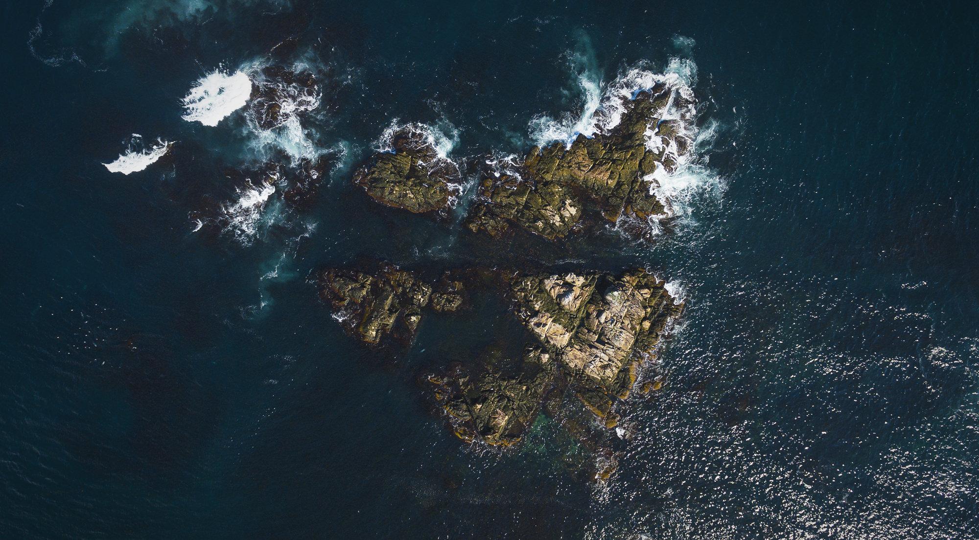duncans cove seal island.jpg