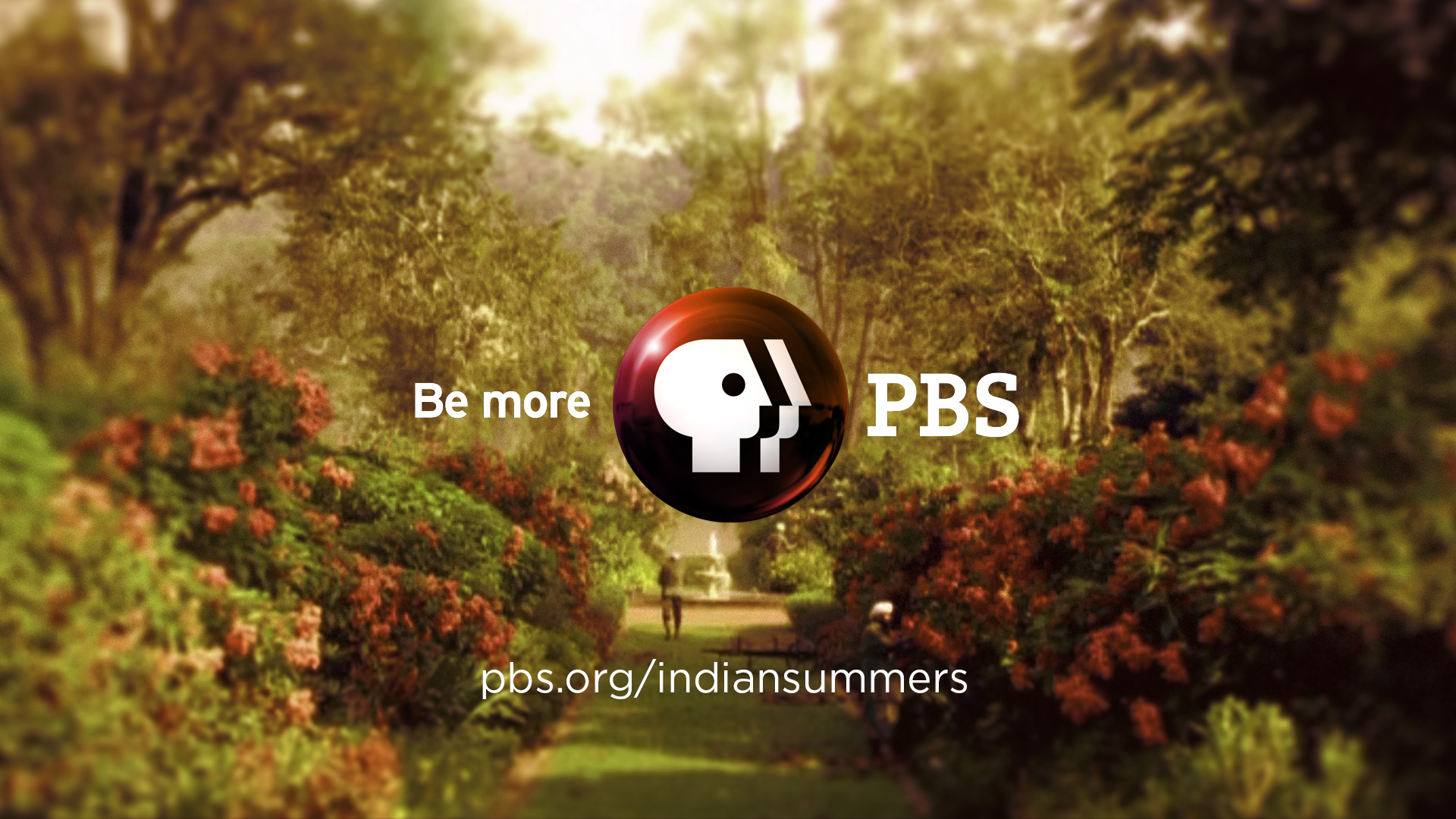 IndianSummers_05_05.jpg