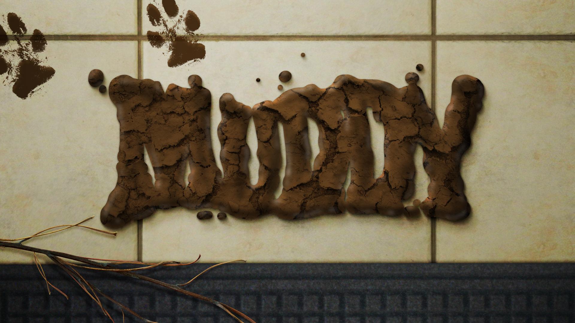 Clorox_muddy_01.jpg
