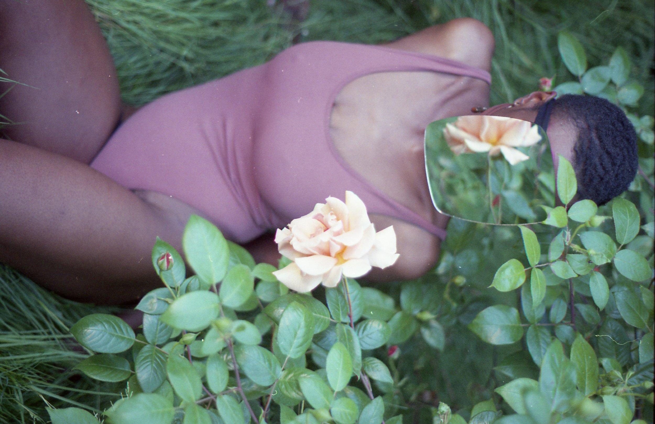 kimaya-roses009.jpg
