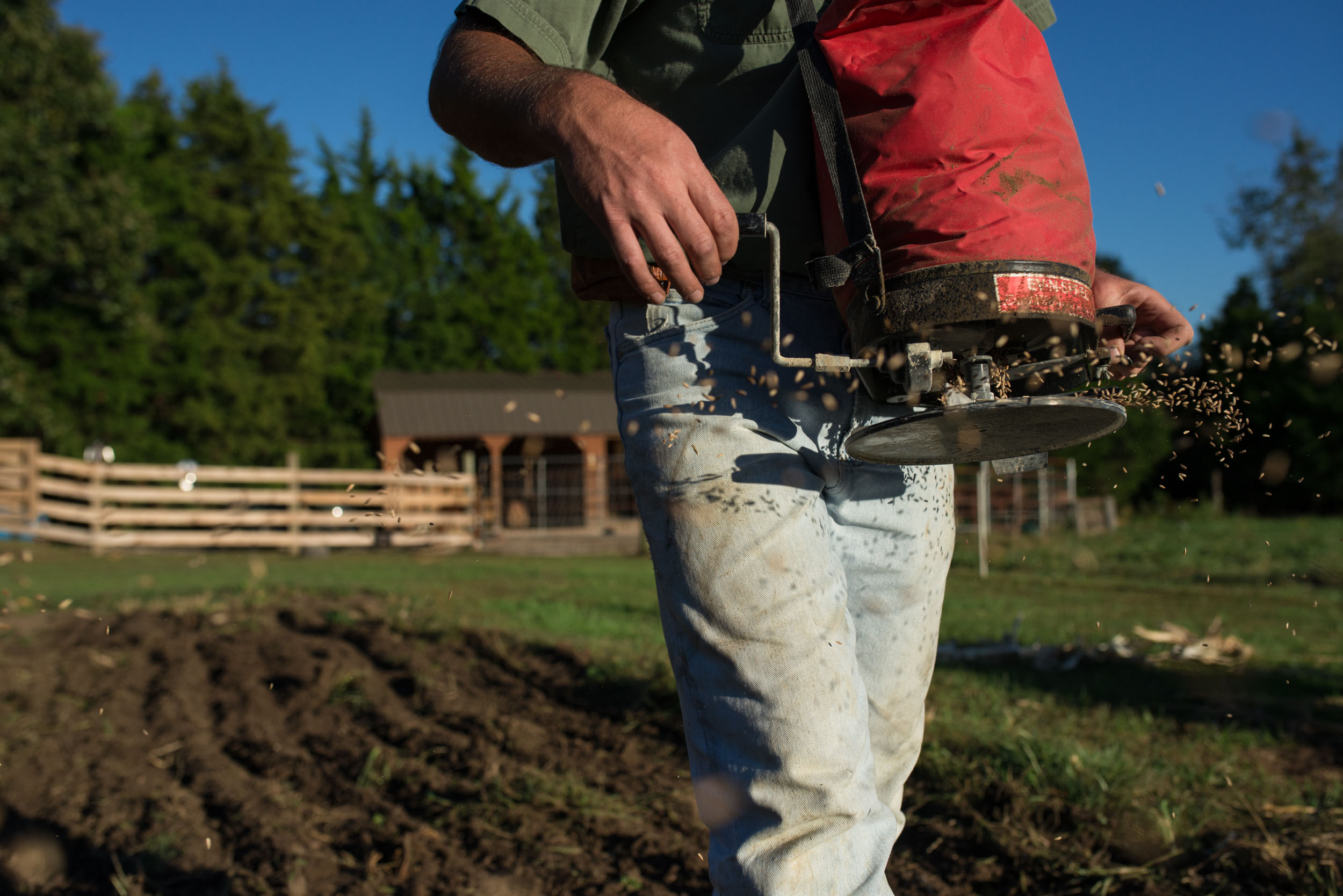 """Nathan seeds the freshly tilled garden plot with rye to rejuvenate the nutrients in the soil. """"We don't have all the fancy equipment other farms have,"""" Nathan said."""
