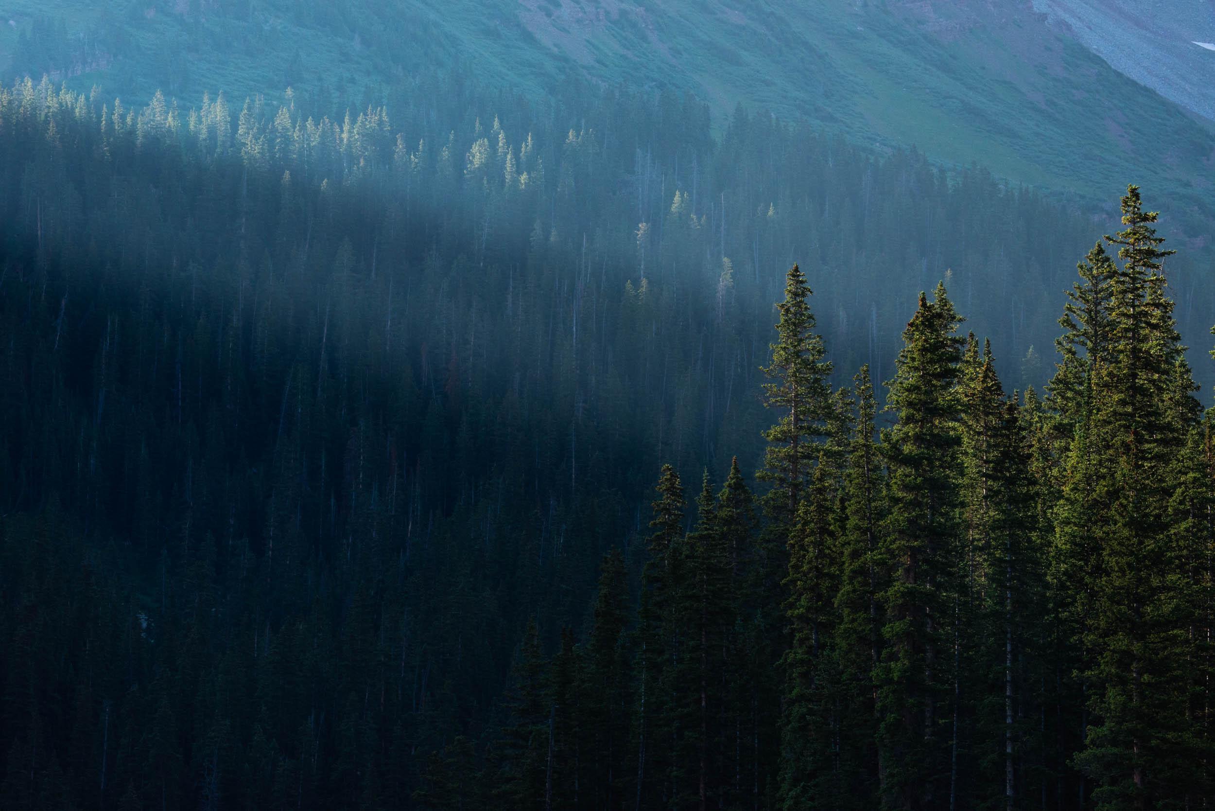 Landscape-color_005.jpg