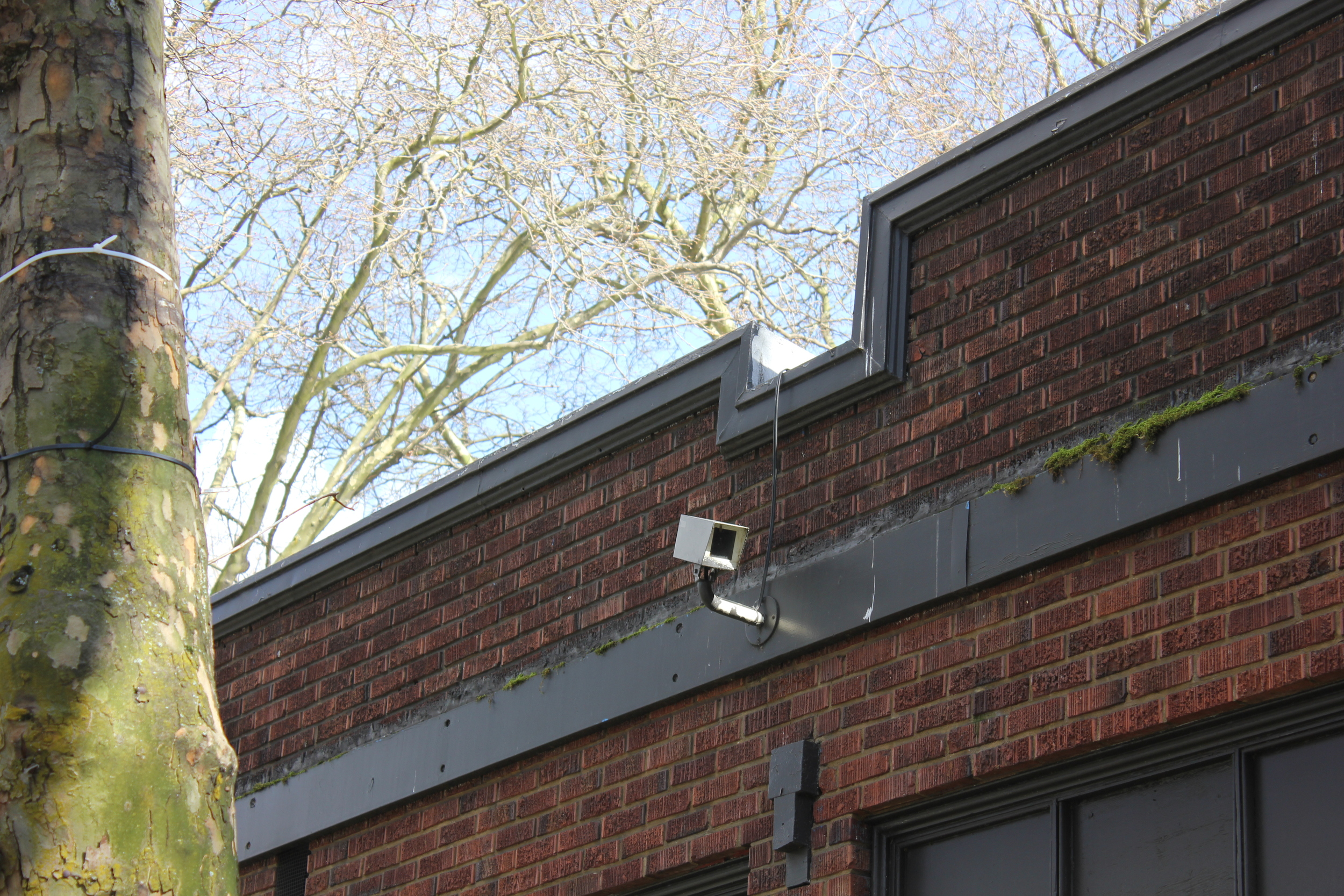Security camera surveilling Tilikum Place.