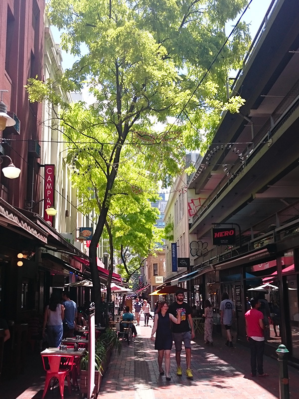 Hardware Lane has a mix of cafes, bars and restaurants with seating extending into the lane. In the evenings this is bustling with street-side diners and musicians Photo by Sarah Oberklaid.
