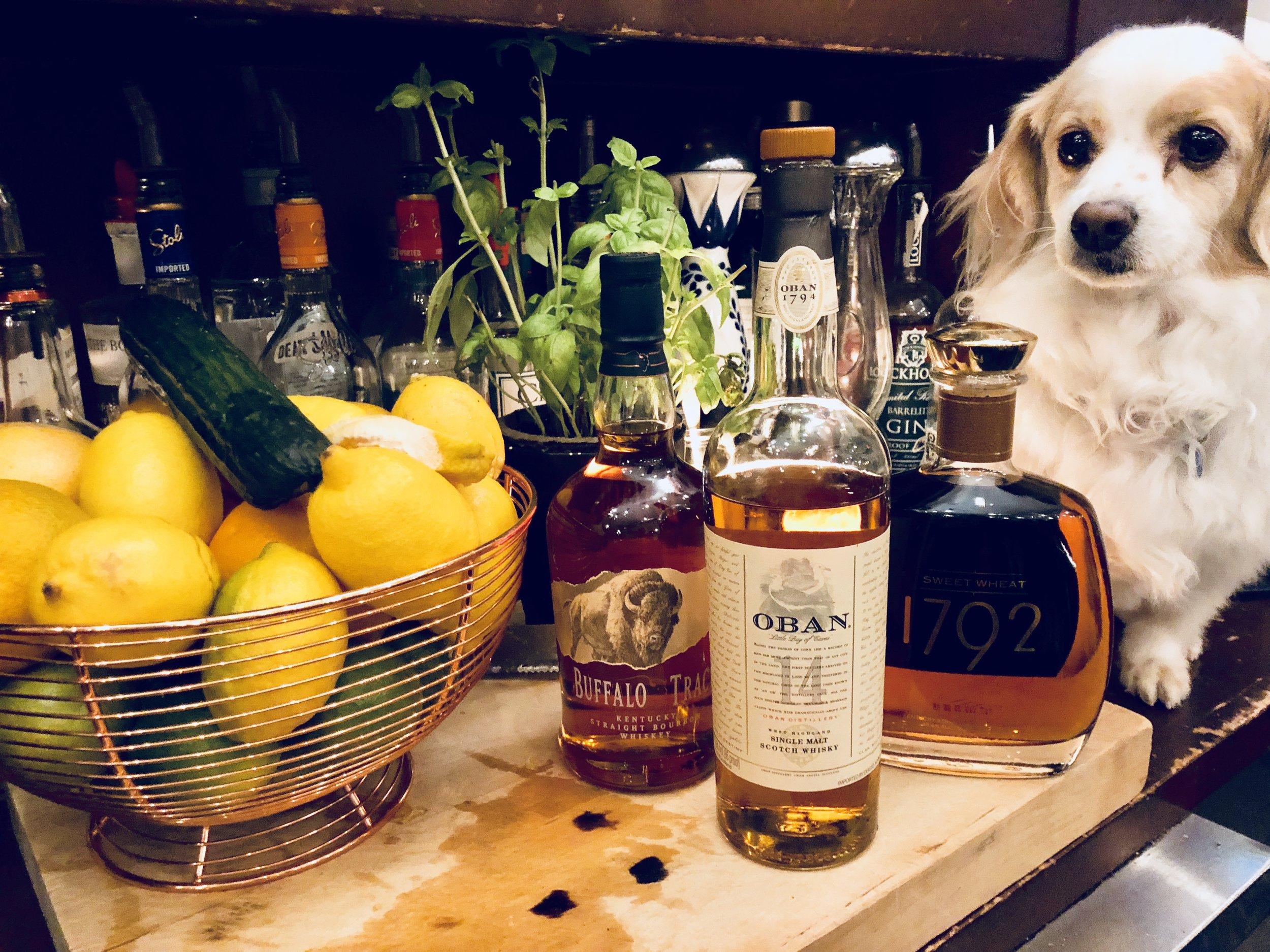 lucy whiskey.jpg