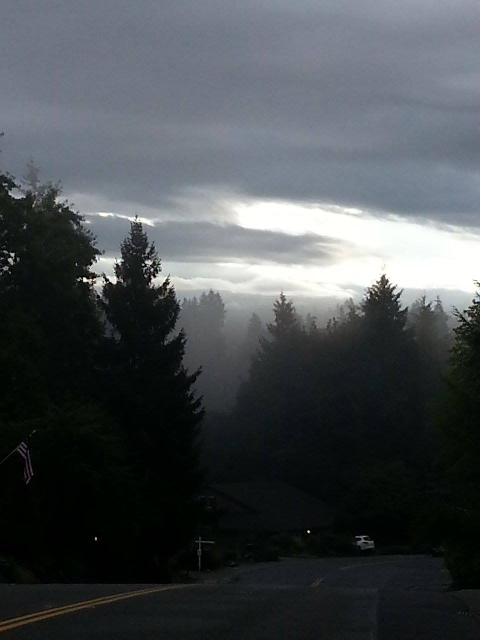 neighborhood fog.jpg