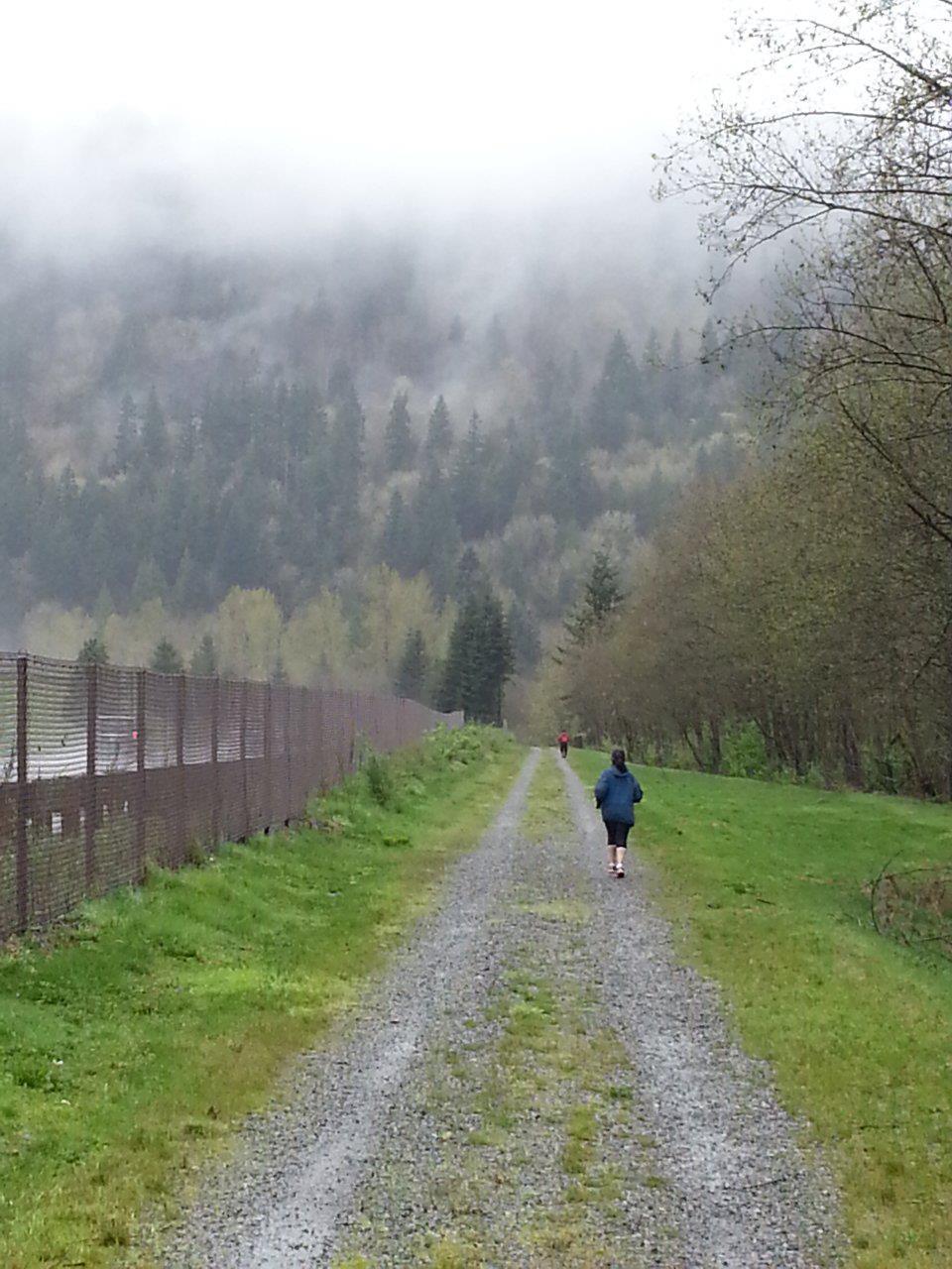 running in the mist.jpg