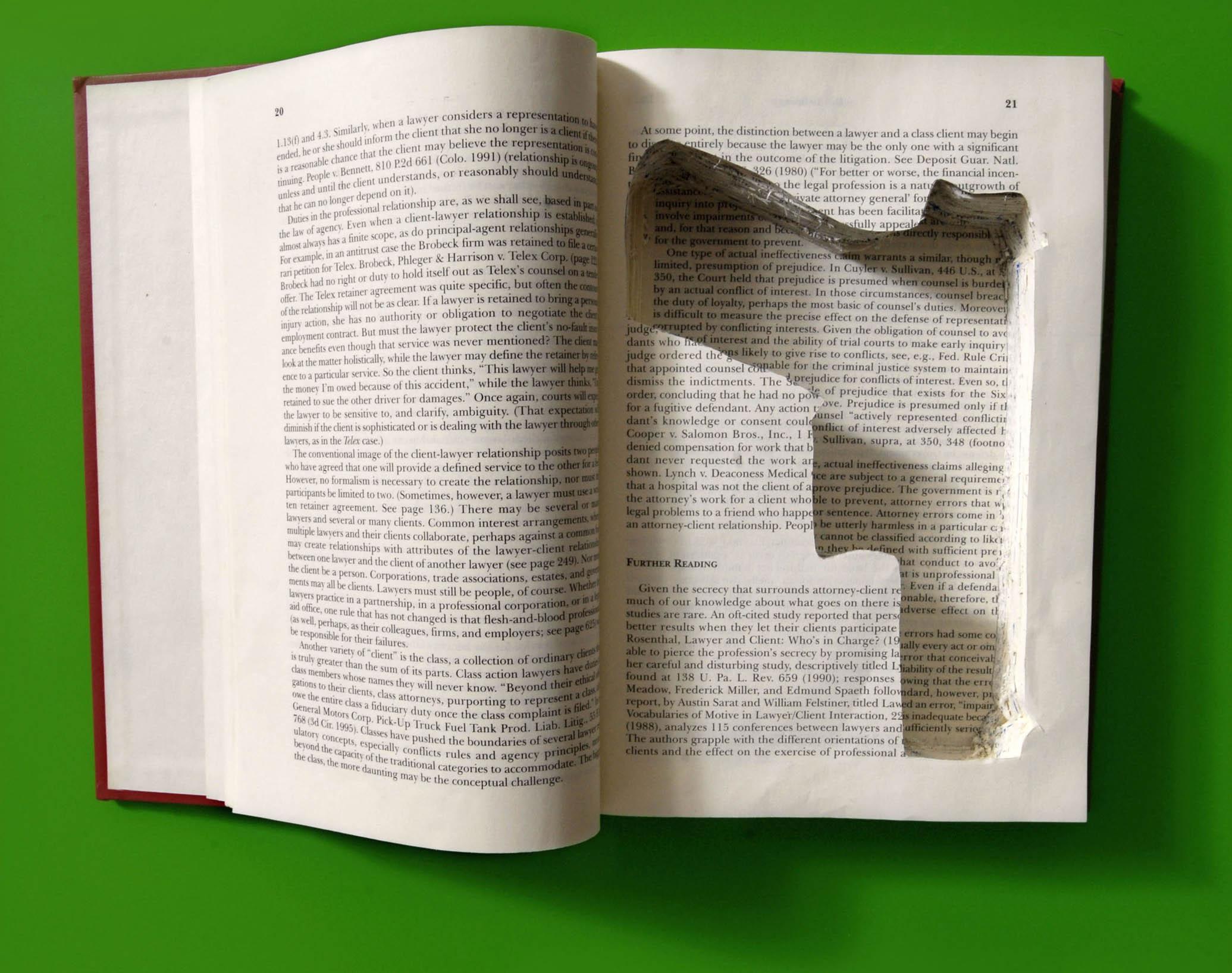 BookGunDYE2em.jpg