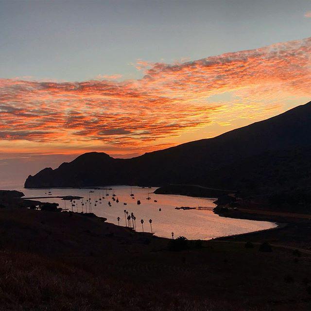 Trans-Catalina Trail at Two Harbors #transcatalinatrail #catalinaisland #tct #socalhiking #thruhike
