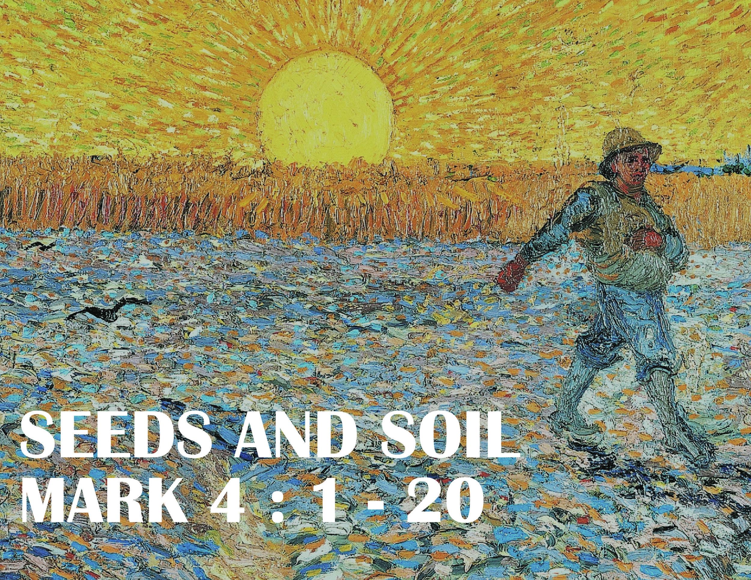 seedssoil-01.jpg