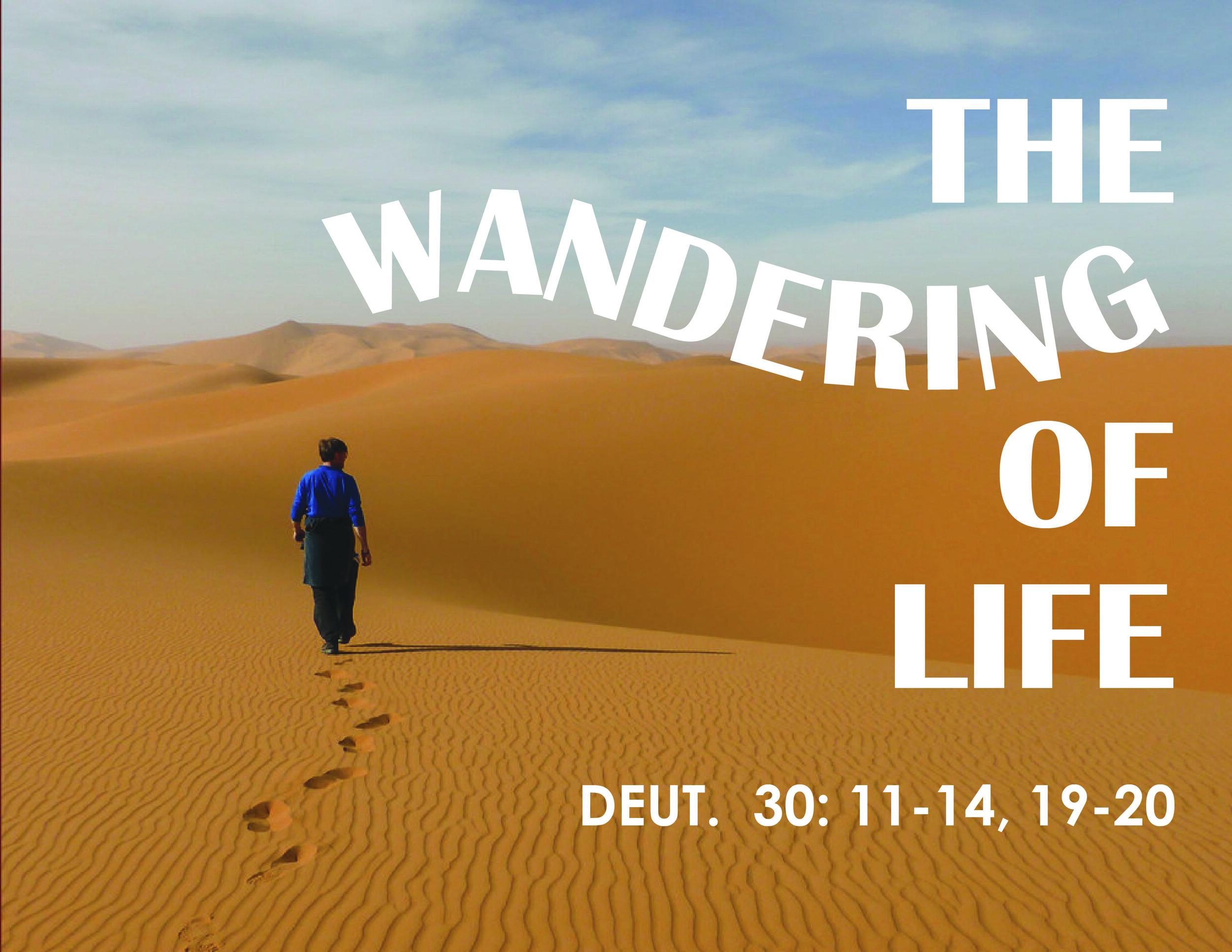 wandering-01.jpg